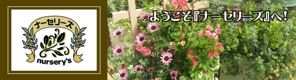 ようこそNURSERY`Sへ