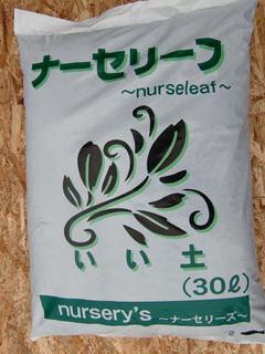 nurs_leaf.jpg