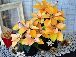 poinsettia gold20161001.jpg