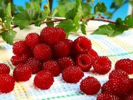 raspberrychodaiou20171001.jpg
