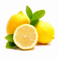 種なしレモン『シードレスあや』