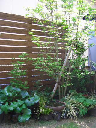 ガーデン工事 甲佐町H様邸 2009年