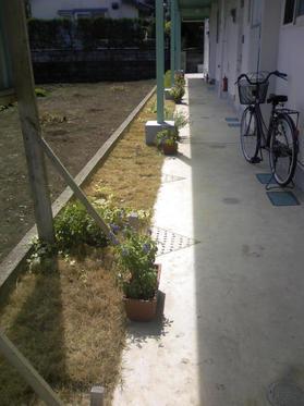 090914_庭 熊本S邸施工前1.JPGのサムネール画像
