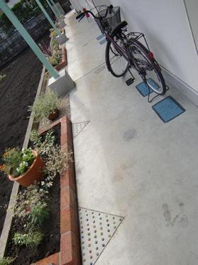 090914_庭 熊本S邸1.JPG