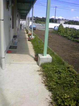 090914_庭 熊本S邸施工前2.JPG