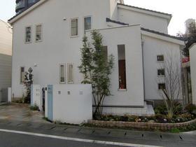 091224_garden_hirahana1.JPG
