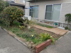 100620_garden_t_before2.JPG