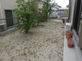 1112010_garden_sugibe1.jpg